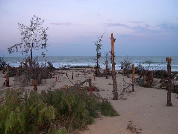Zerstörungen an der Küste Sri Lanka